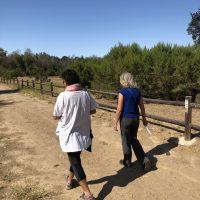 Sultana & Sheryl walking Somatic Walking 2021